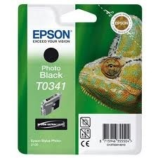 EPSON - Epson T0341 Orjinal Foto Siyah Kartuş C13T034140